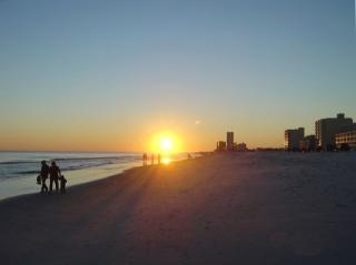 401 E Beach Blvd #1609, Gulf Shores, AL 36542