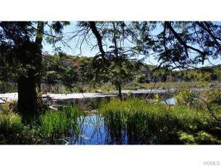 Tennanah Lake Rd, Roscoe, NY 12776