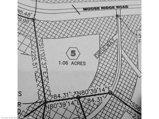 Lot 5 Moose Ridge Road, Dallas Plantation ME