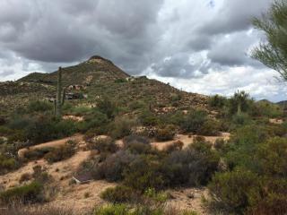 39838 N 98th Way, Scottsdale, AZ 85262