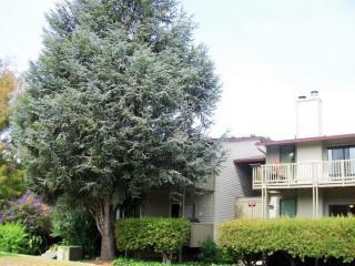 4172 George Ave #5, San Mateo, CA 94403