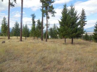 LOT 6 6 RIVER WEST Ests, Plains, MT 59859
