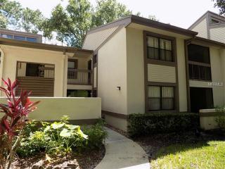 129 Woodlake Wynde #1, Oldsmar, FL 34677