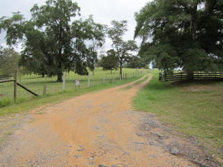 Hwy 90e Mt Pleasant Cemetery Road, Sneads FL