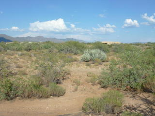 South Slick Fork Trail Lot, Congress AZ