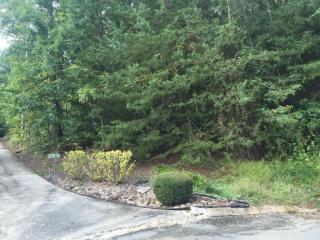 908 Hidden Ledge Trail, Hixson TN