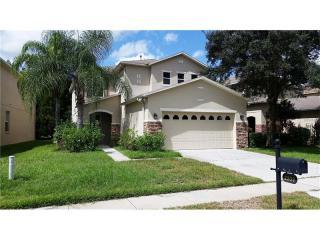 2339 Silvermoss Drive, Wesley Chapel FL