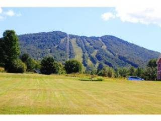 2200 Mountain Rd, East Burke, VT 05832