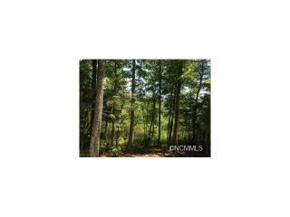 91 Smokey Ridge Trail #194, Arden NC