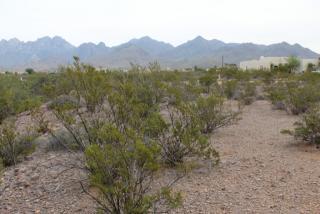 5016 Modoc Trail, Las Cruces NM