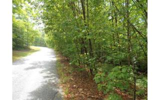 1 Cedar Mountain Trail, Blairsville GA