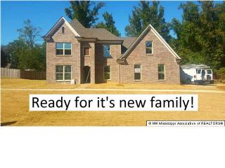 14500 Red Chip Trail, Olive Branch MS