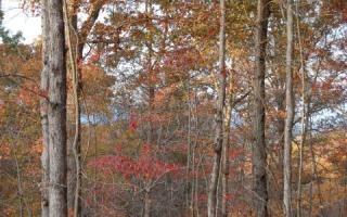 Lot 10 Hideaway Fls, Copperhill TN