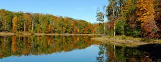 Lake Estates by Ryan Homes