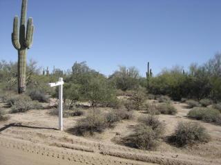 26795 North 77th Street, Scottsdale AZ
