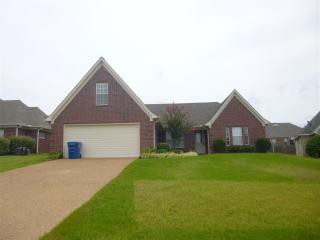 35 Willow Birch Cv, Somerville, TN 38068