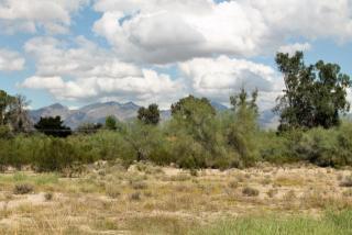 4961 East 22nd Street, Tucson AZ