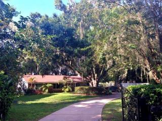 8815 Osceola Acres Trail, Odessa FL
