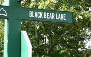 150 Blackshear Land, Jasper GA