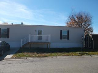 51 S Byron Dr, Wintersville, OH 43953