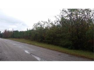 Lot 4 Old Walthall Rd, Eupora, MS 39744