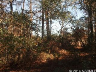 8664 Misty Dawn Ln, Tallahassee, FL 32305
