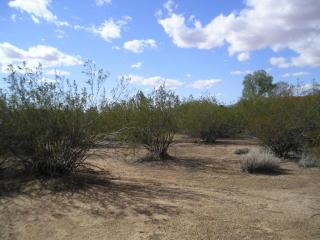 Lot 071 West J-1 Ranch Road, Wickenburg AZ
