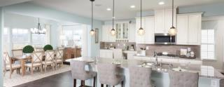 Beechtree Singles by Ryan Homes