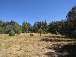 34001 Turkey Creek Lane, Trinidad CO
