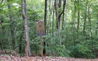 110 Bell Creek Holw, Hayesville NC