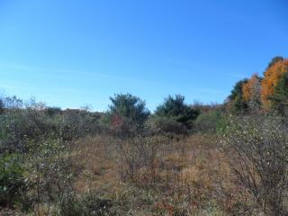 Mcgee Rd, Clune, PA 15727