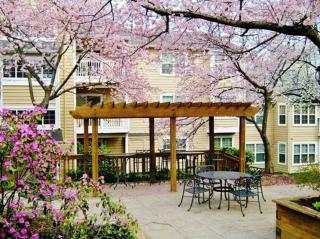 9401 Spring House Ln, Laurel, MD 20708