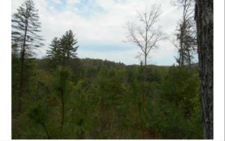LOT17 Mountain Creek Estat, Morganton GA