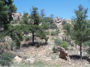 6650 West Box Canyon Place, Prescott AZ