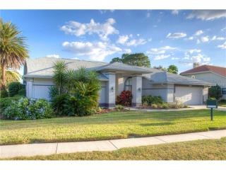 16407 Birkdale Drive, Odessa FL