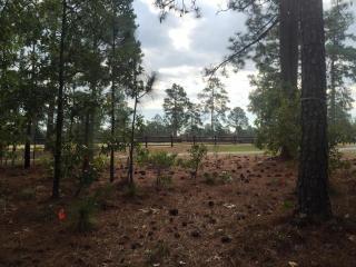 Tbd Pine Needles Lane, Southern Pines NC
