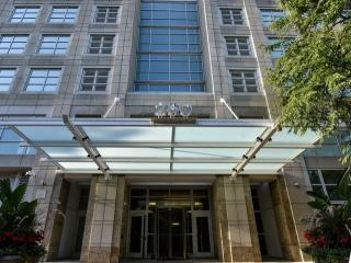 250 East Pearson Street #1104, Chicago IL