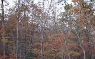 Lot 9 Hideaway Fls, Copperhill TN