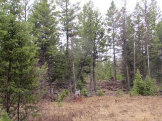 763 Haskill Ranch Lot 24 Road, Kila MT