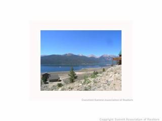 446 La Plata Peak Drive, Twin Lakes CO