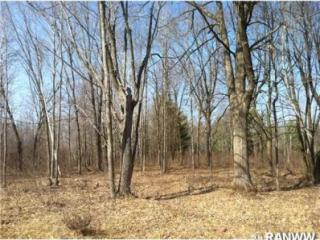 Lot 10 250th Street #10, Cadott WI