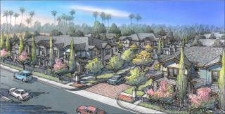 Covington by Brandywine Homes