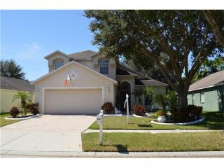 3319 Manor Cove Circle, Riverview FL