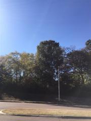 Kimbrough Road, Germantown TN