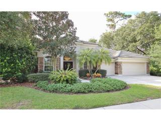 1556 Owls Retreat, Tarpon Springs FL