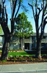 3955 Vineyard Ave, Pleasanton, CA 94566