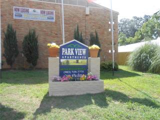 222 S Church St, Palestine, TX 75801
