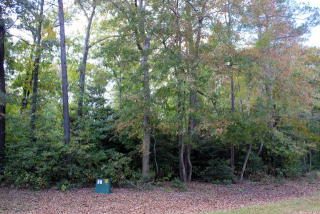 Lot 16 Jolly Rodger Drive, Greenbackville VA