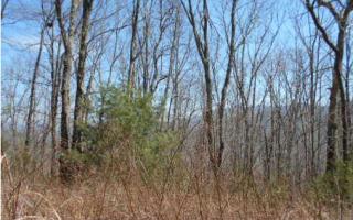 Lot 4 Wild Turkey Road, Blairsville GA