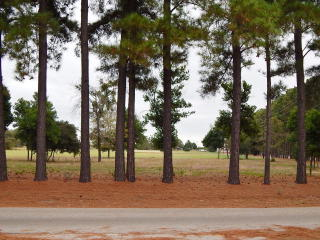 LOT 15 15 VALLEY View, Athens TX
